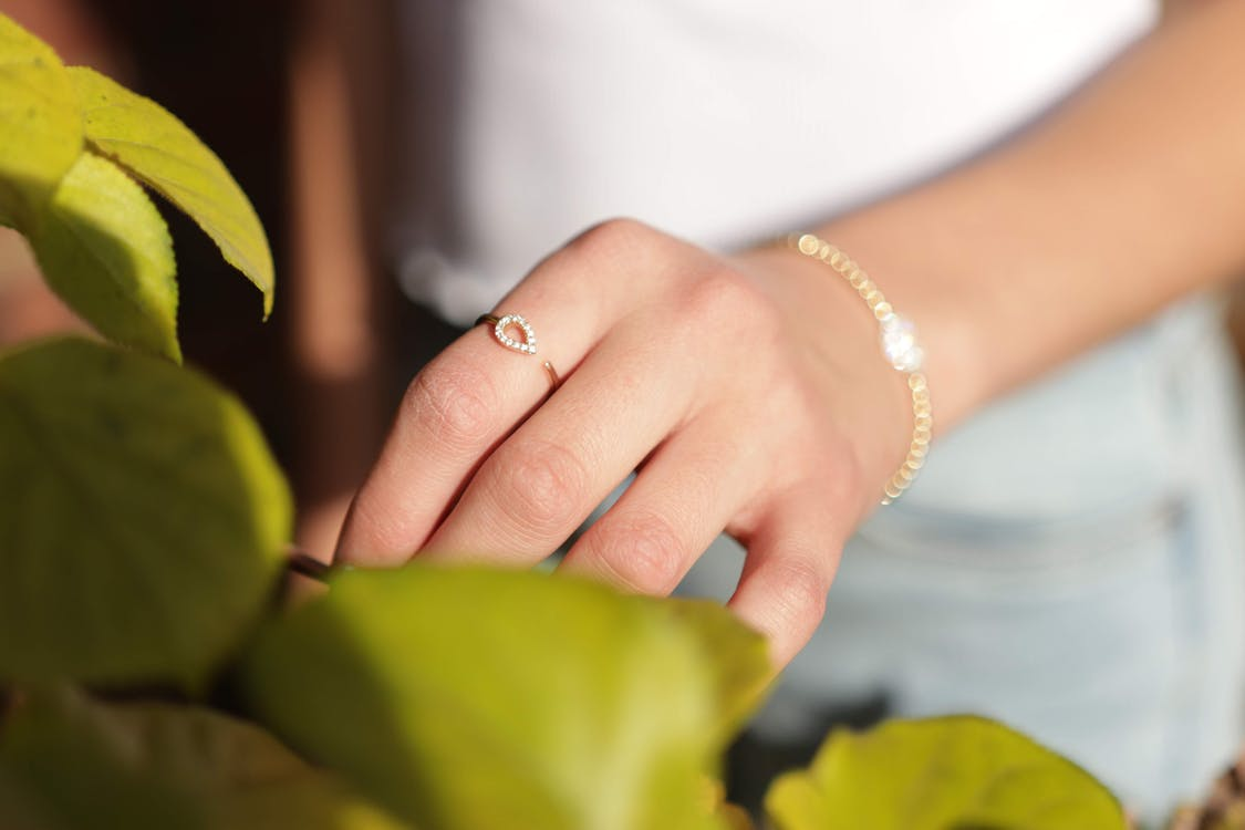 Person Touching Green Leaves