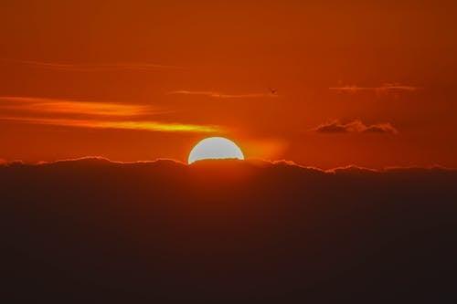새벽, 역광을 받은, 일몰, 일출의 무료 스톡 사진