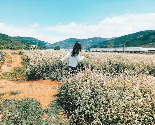 Foto profissional grátis de área, brilho do sol, garota correndo, menina em t-shirt branca