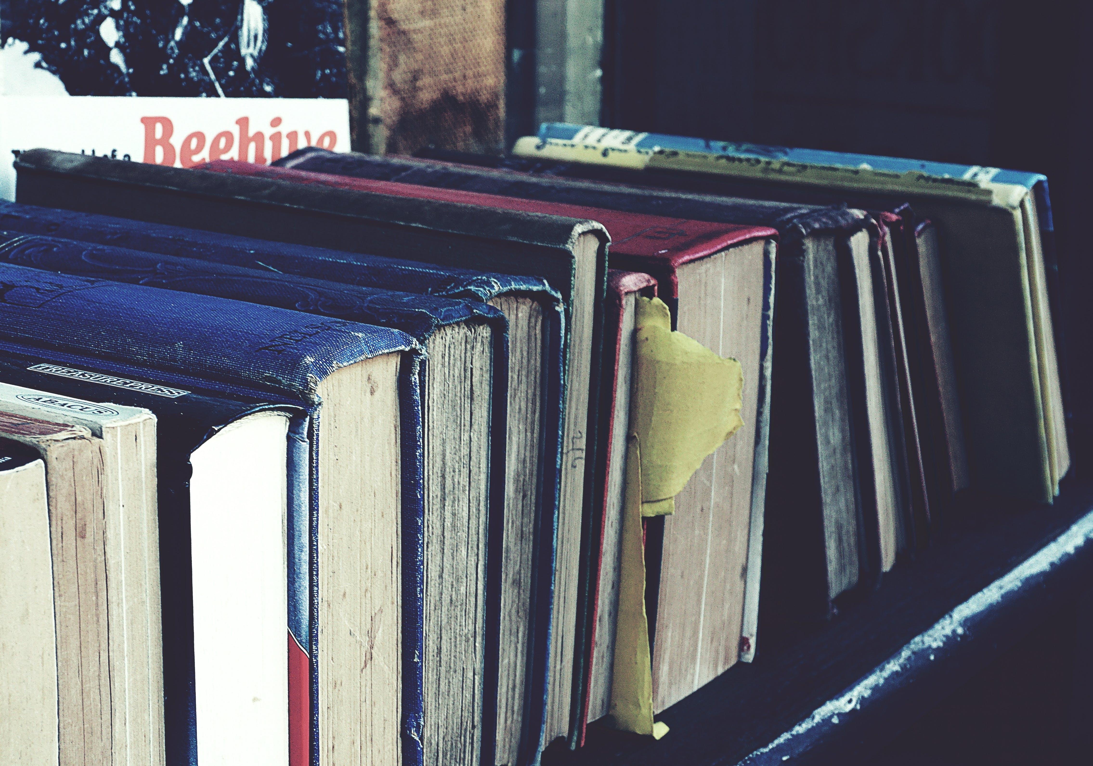 Free stock photo of book stack, books, bookshop, bookstore