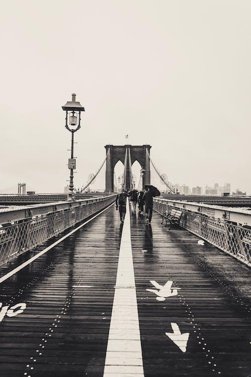 경치, 뉴욕, 다리, 도시의 무료 스톡 사진
