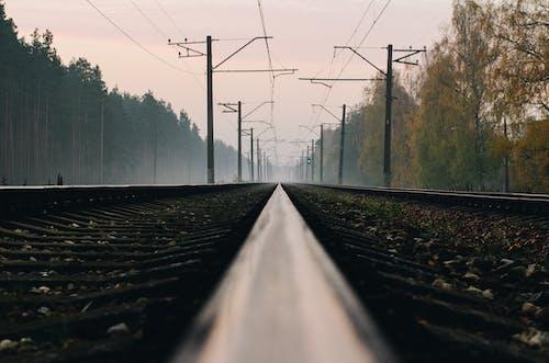 Free stock photo of fog, foggy, landscape, railroad