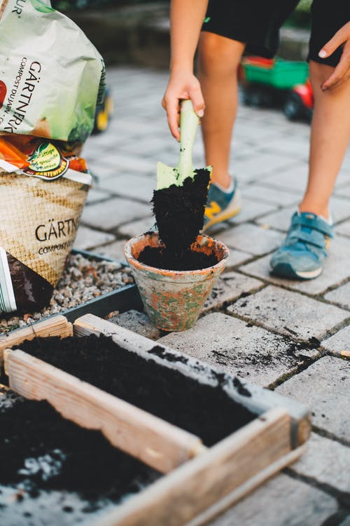 Person Putting Soil On Plant Pot