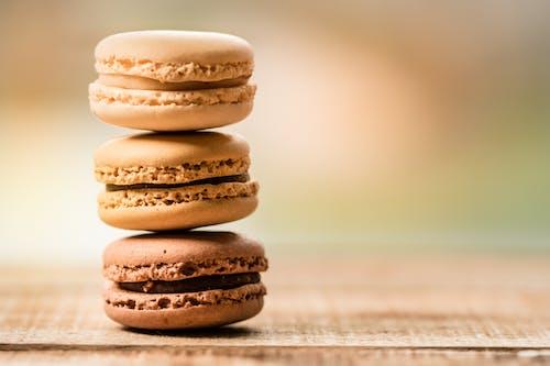 Fotobanka sbezplatnými fotkami na tému chutný, čokoláda, cukor, cukrársky výrobok