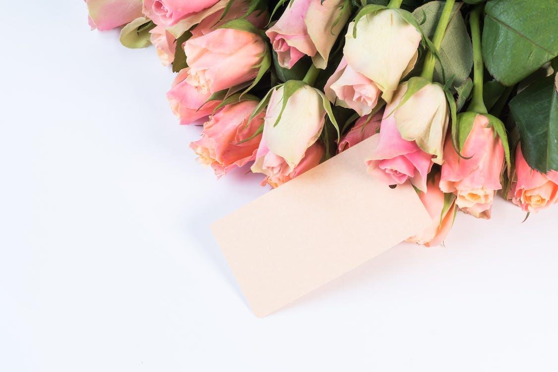 bellissimo, delicato, fiori