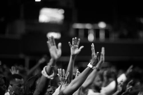 Darmowe zdjęcie z galerii z czarno-biały, grupa, grupować, koncert