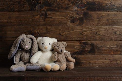 คลังภาพถ่ายฟรี ของ barnwood, ตุ๊กตาหมี, ประกอบด้วย, ภาพพื้นหลัง