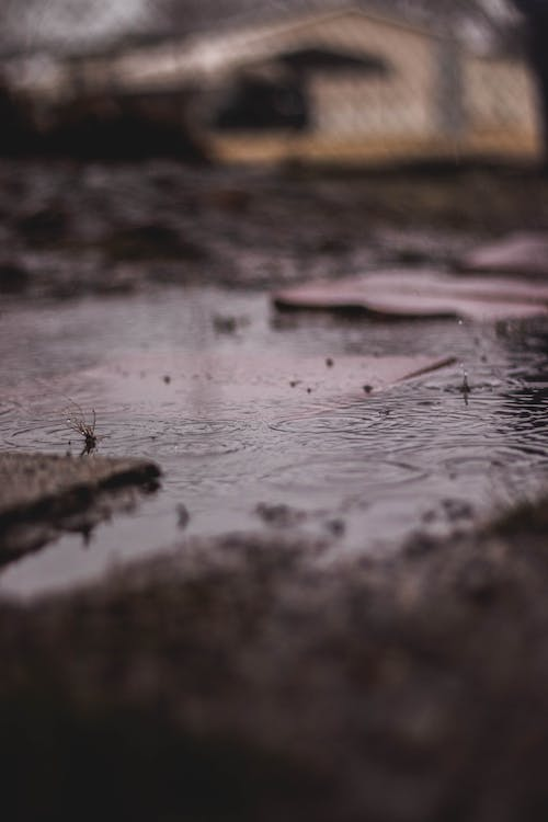 Free stock photo of cloudy, moody, mud, puddle