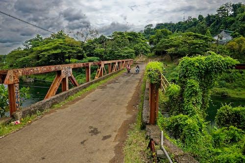 Foto profissional grátis de espaço, estrada, Indonésia, motocicletas
