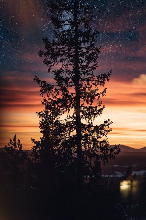 Foto stok gratis alam, lansekap, malam, matahari terbenam