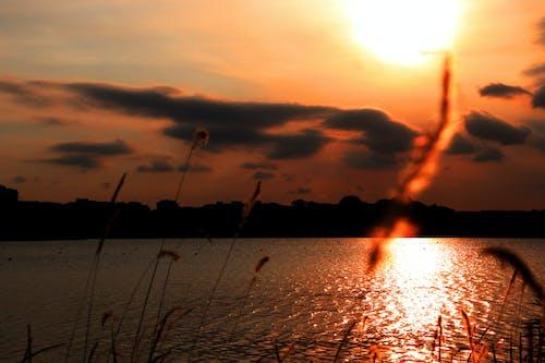 en iyi, gün batımı içeren Ücretsiz stok fotoğraf