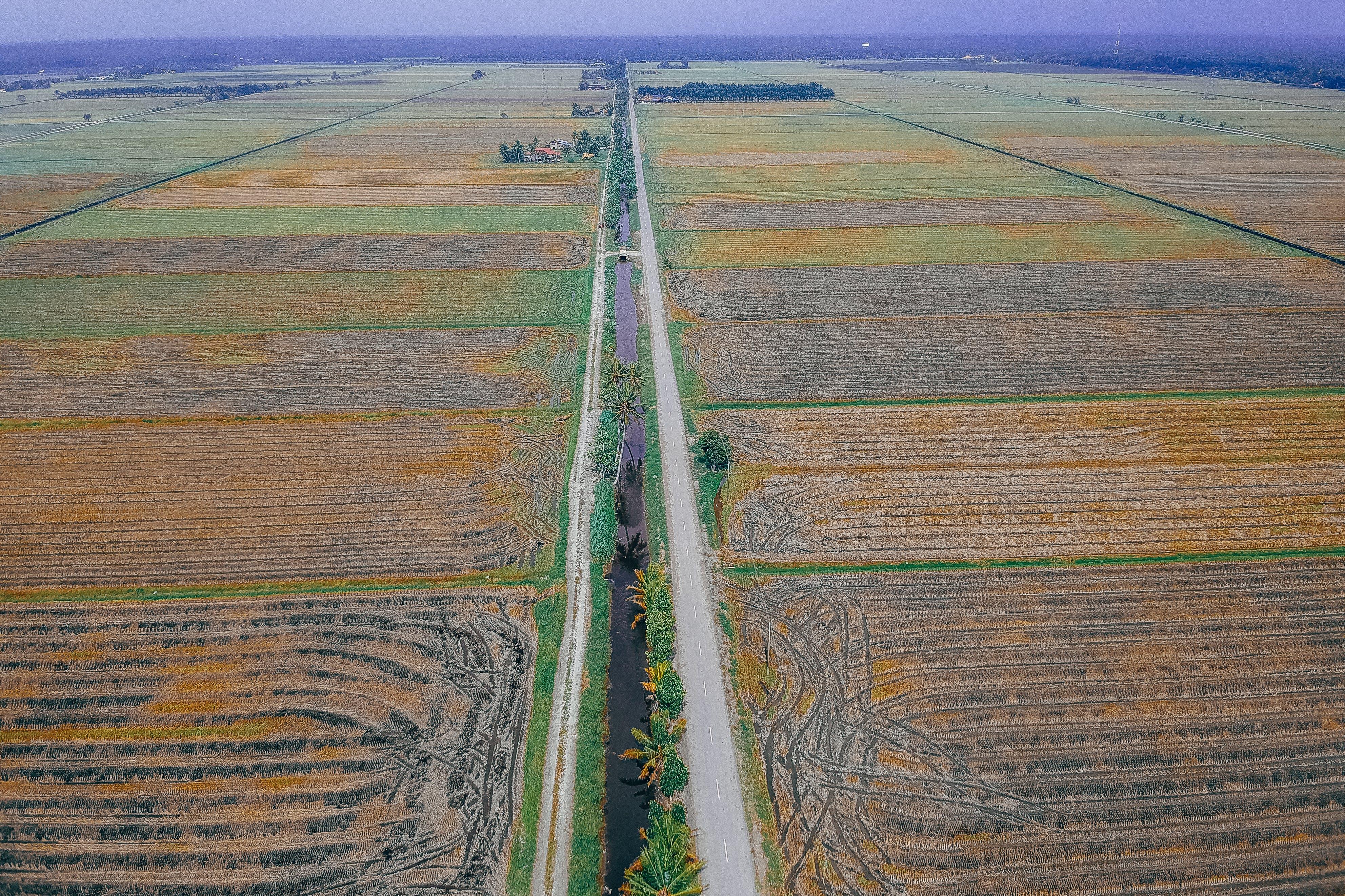 Aerial Shot Of Green Field