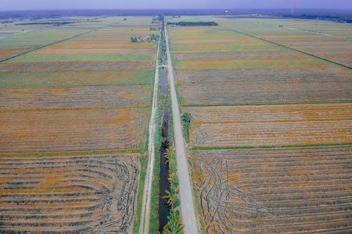 Imagine de stoc gratuită din câmp, de deasupra, fermă, fotografie din aer