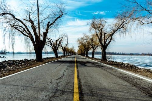 คลังภาพถ่ายฟรี ของ การถ่ายภาพ, ความสงบ, ถนน, ฤดูหนาว