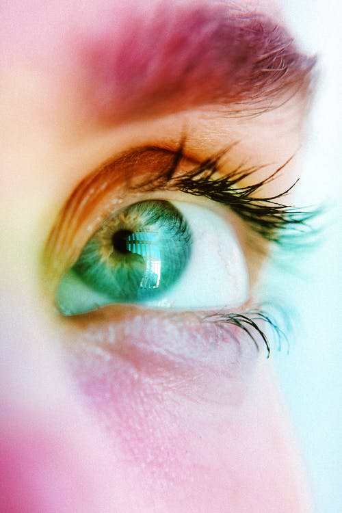 Macro Photography of Person's Eye