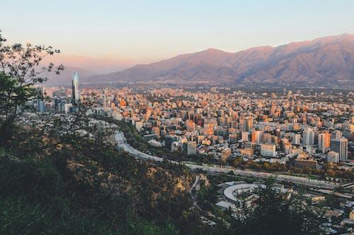Imagine de stoc gratuită din America de Sud, arbori, arhitectură, centrul orașului