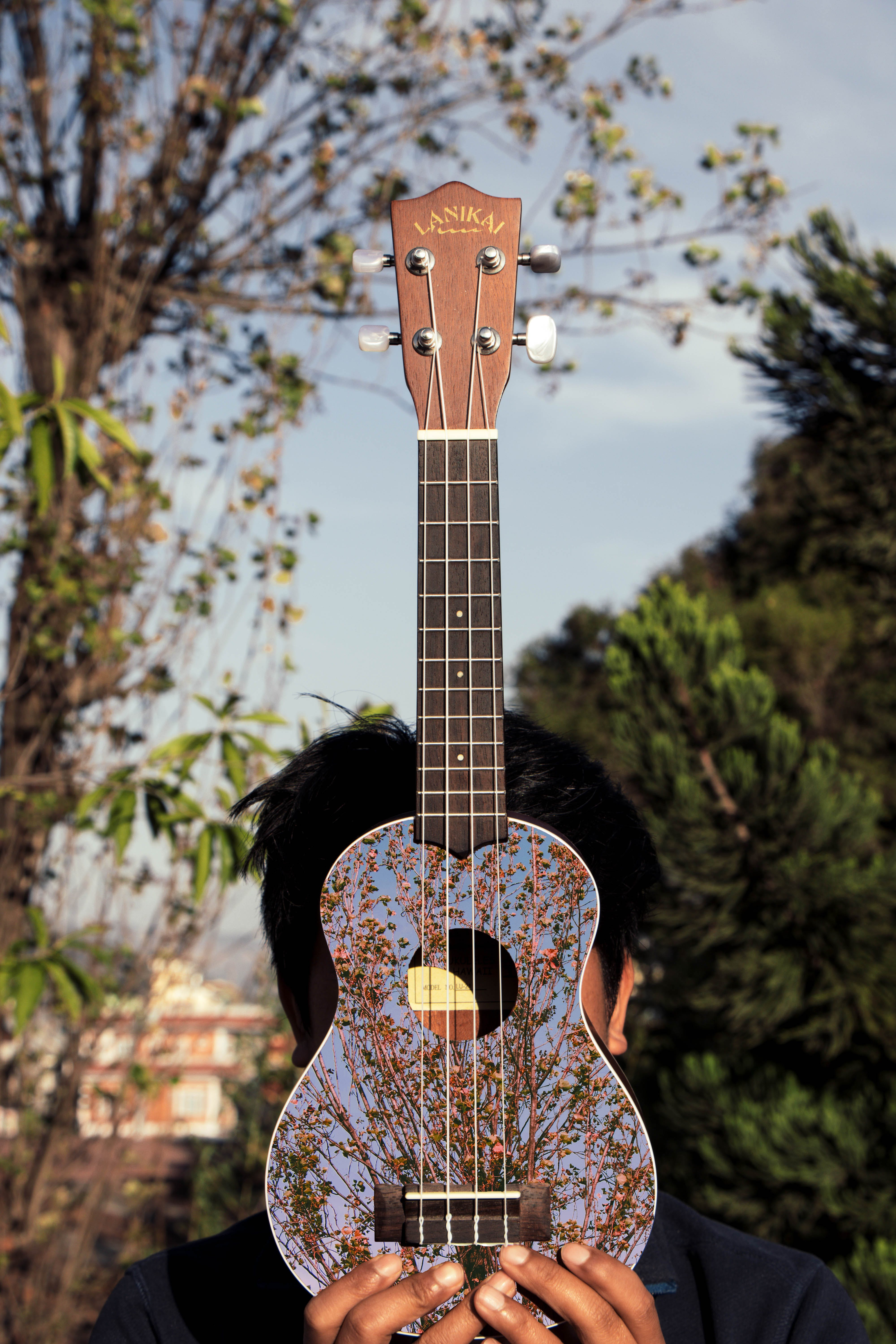 Blue and Brown Ukulele