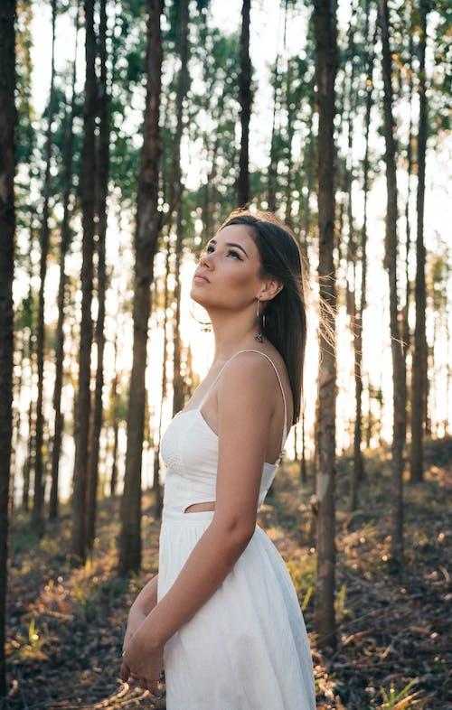 경치, 공원, 나무, 드레스의 무료 스톡 사진