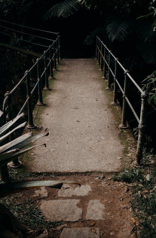 建築, 橋, 欄杆 的 免費圖庫相片