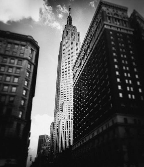Imagine de stoc gratuită din alb-negru, America, arhitectură, birou
