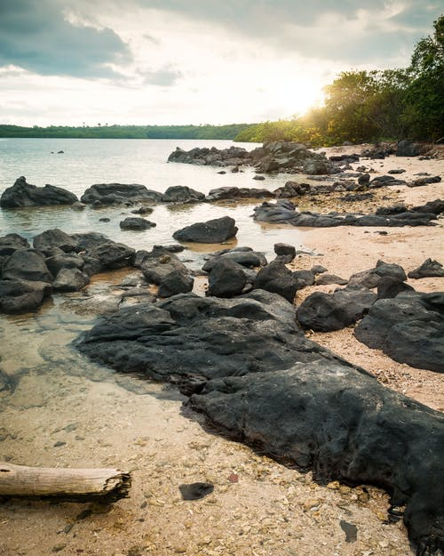 Black Rocks on Shore