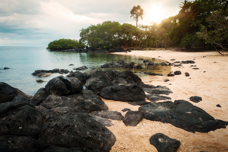 Rocks Near Shore
