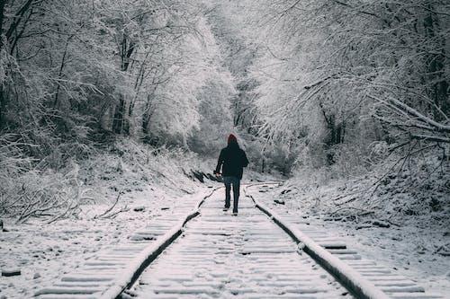 Безкоштовне стокове фото на тему «залізнична колія, зима, зимове чудо, зимовий пейзаж»