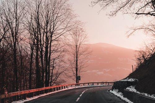 Fotobanka sbezplatnými fotkami na tému cesta, hora, krajina, krásny