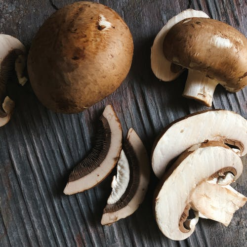 蘑菇 的 免费素材照片