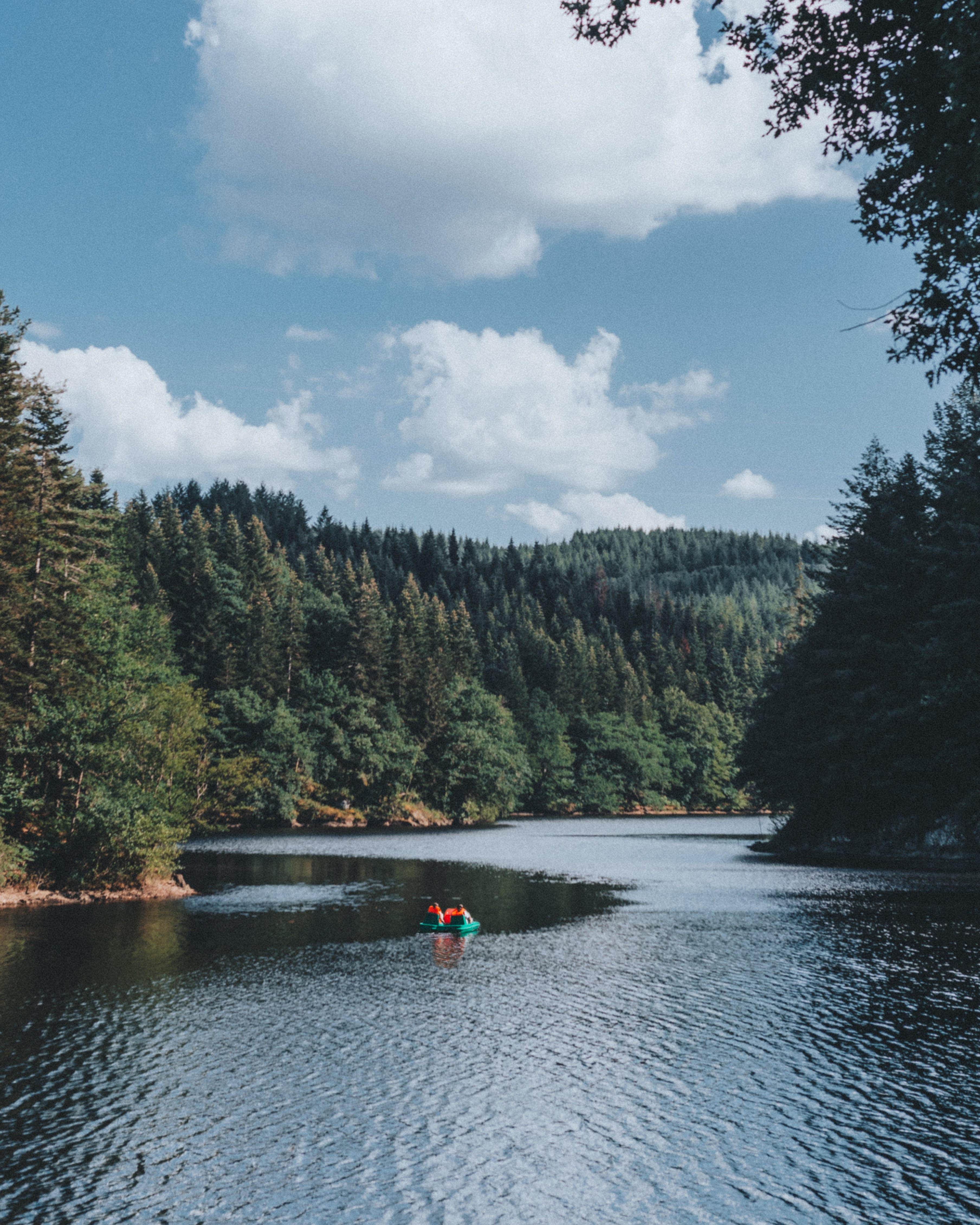 Person Riding Swimming Ring on Body of Water Surrounded With Trees