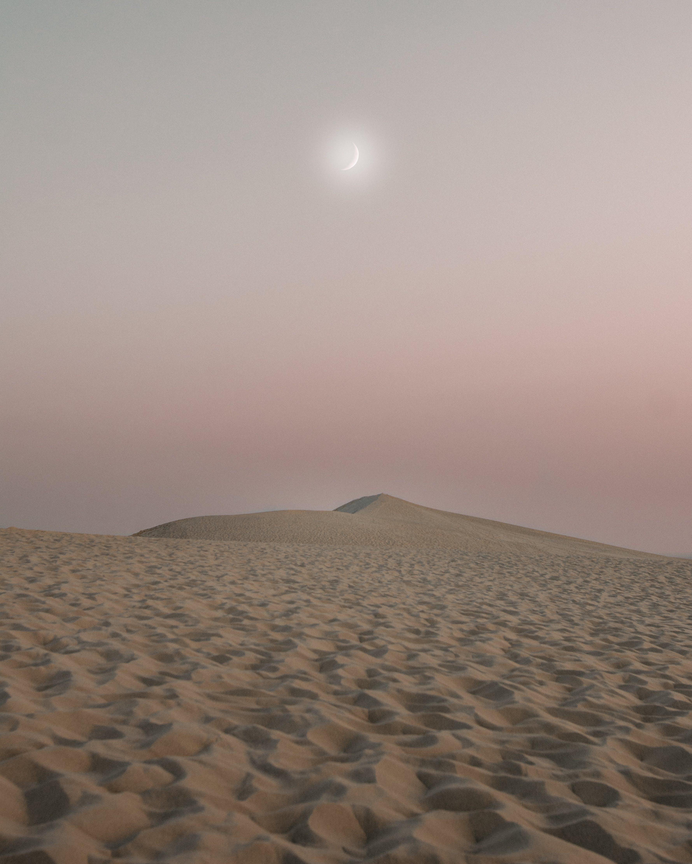 areia, árido, desértico
