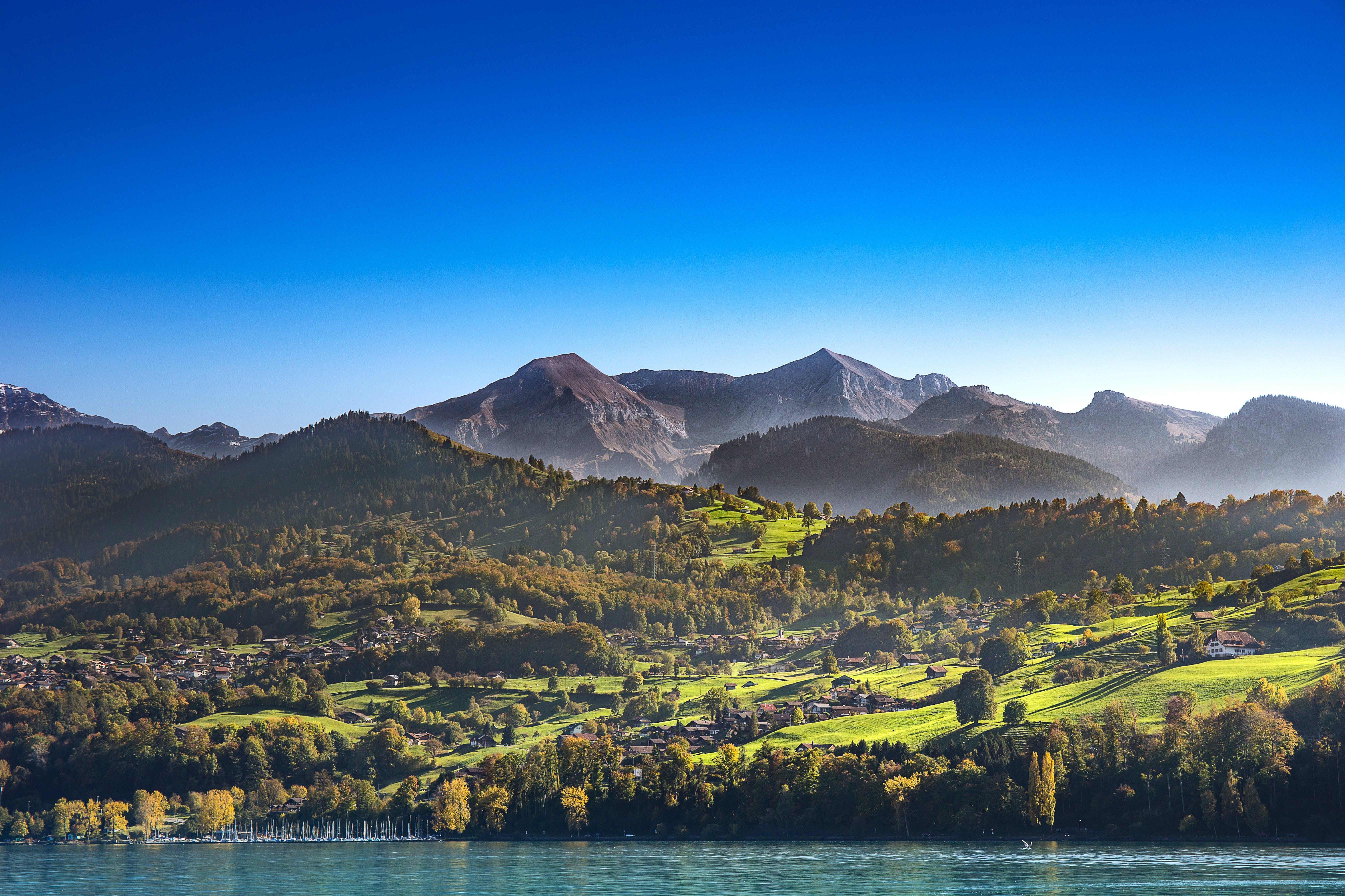 Kostenloses Stock Foto zu alpen, baum, berg, bern