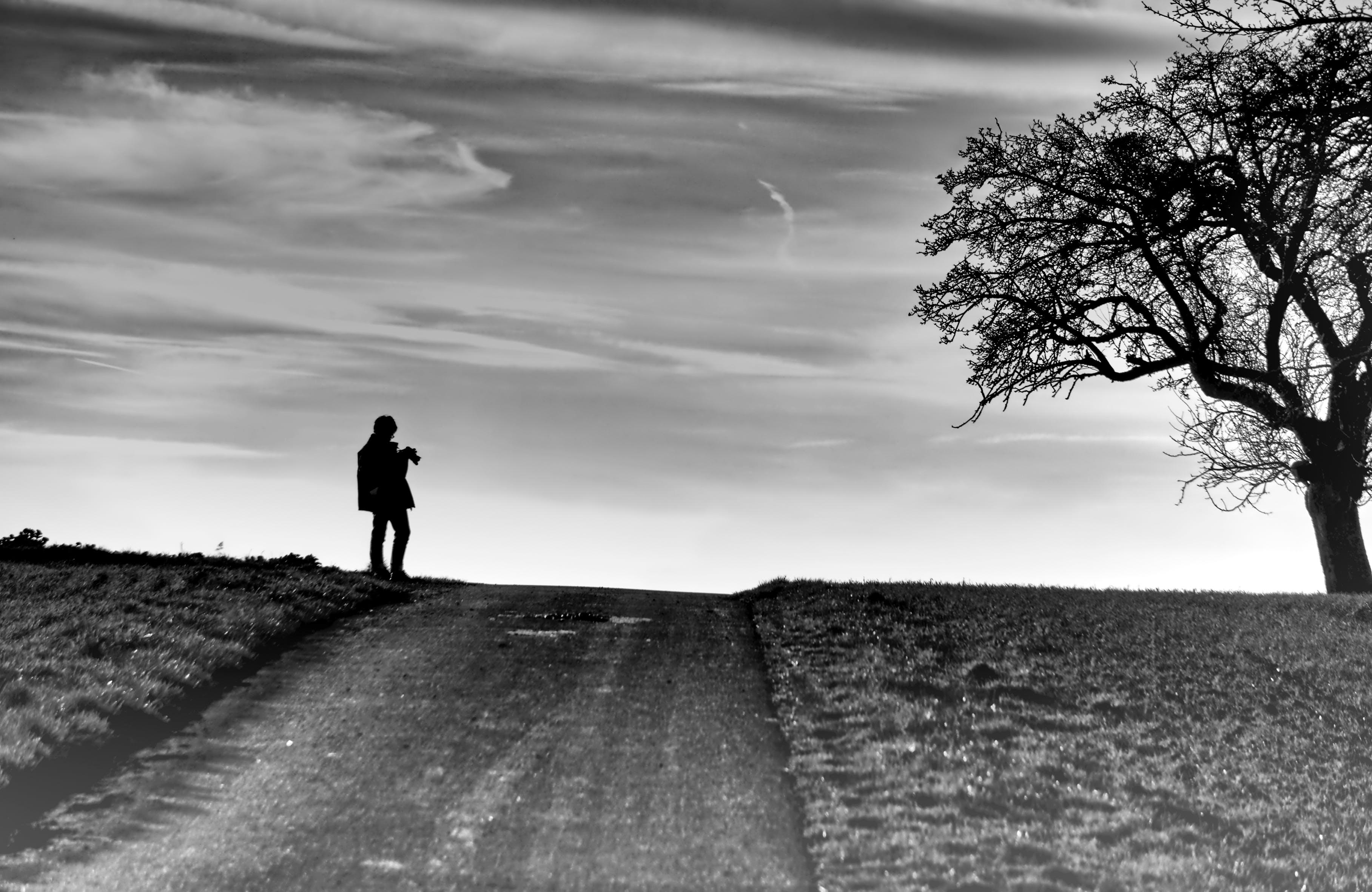 Δωρεάν στοκ φωτογραφιών με ανθρώπινος, άνθρωποι που περπατούν, γυμνό δέντρο, δέντρο