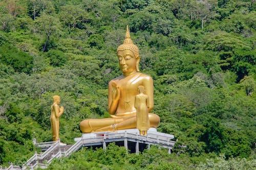 Ilmainen kuvapankkikuva tunnisteilla buddha, glod, kuva