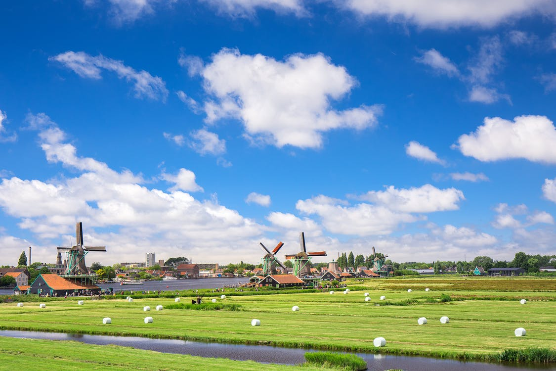 Amszterdam, Európa, farm