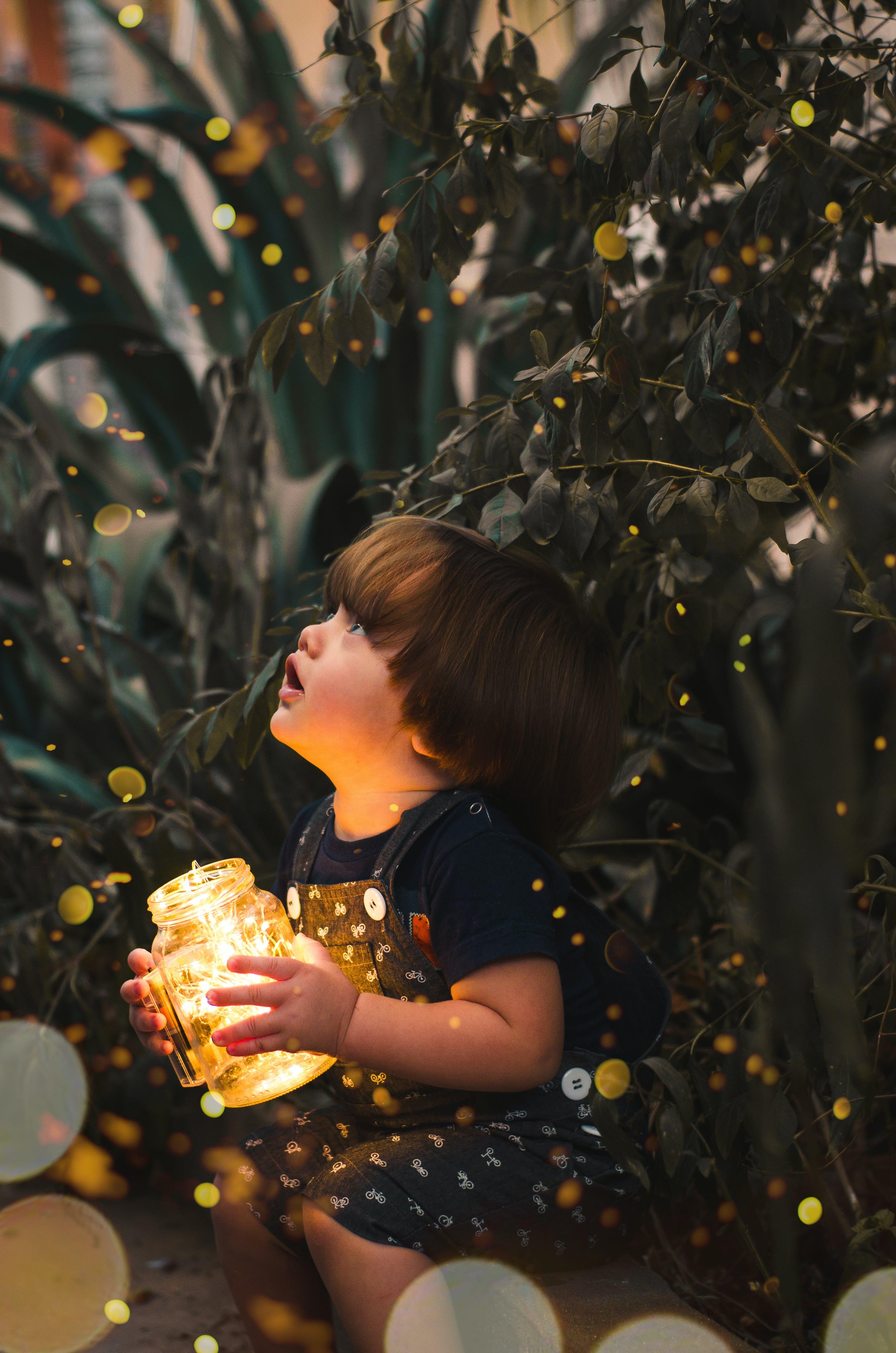Darmowe zdjęcie z galerii z ciekawość, czas wolny, drzewo, dziecko