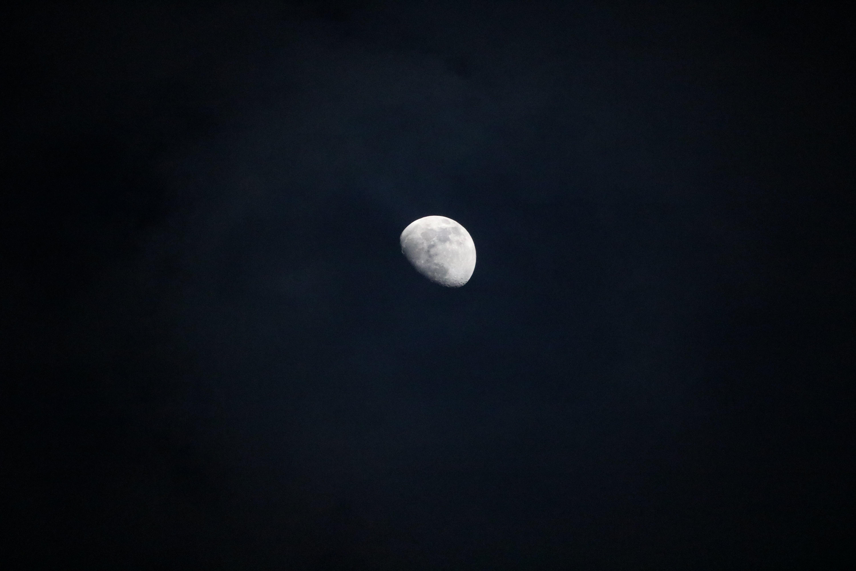 คลังภาพถ่ายฟรี ของ กลางคืน, ขาวดำ, จันทรคติ, จันทรา