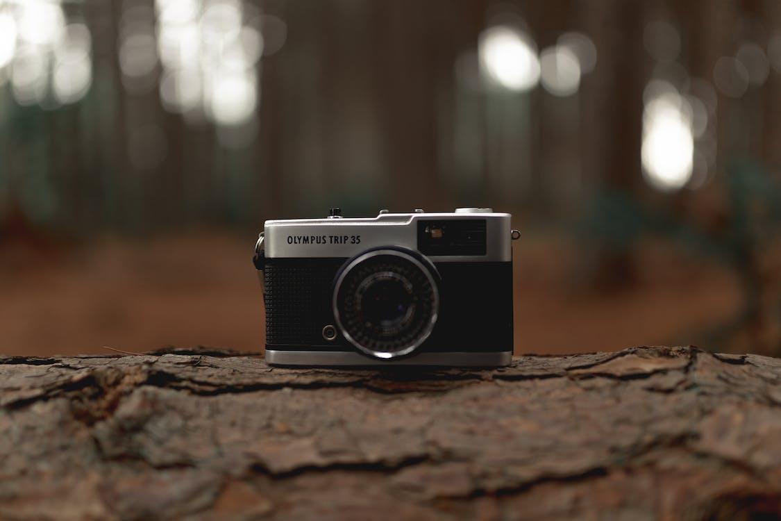 analog, analog kamera, fokus