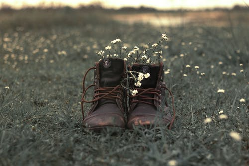 Shabby boots with flowers in field