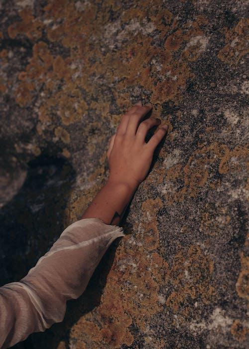 Základová fotografie zdarma na téma denní světlo, dotyk, dotýkání, geologie