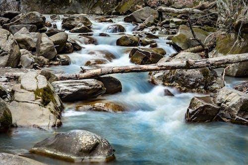 Photos gratuites de blocs, bois, cailloux, cascade