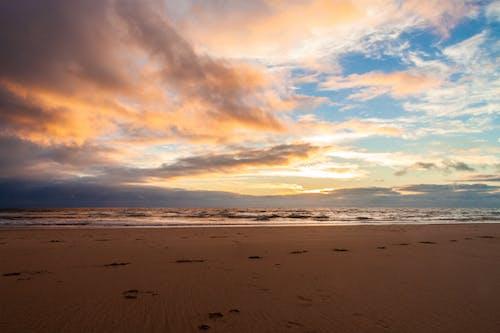 天性, 日落, 海, 海灘 的 免费素材照片