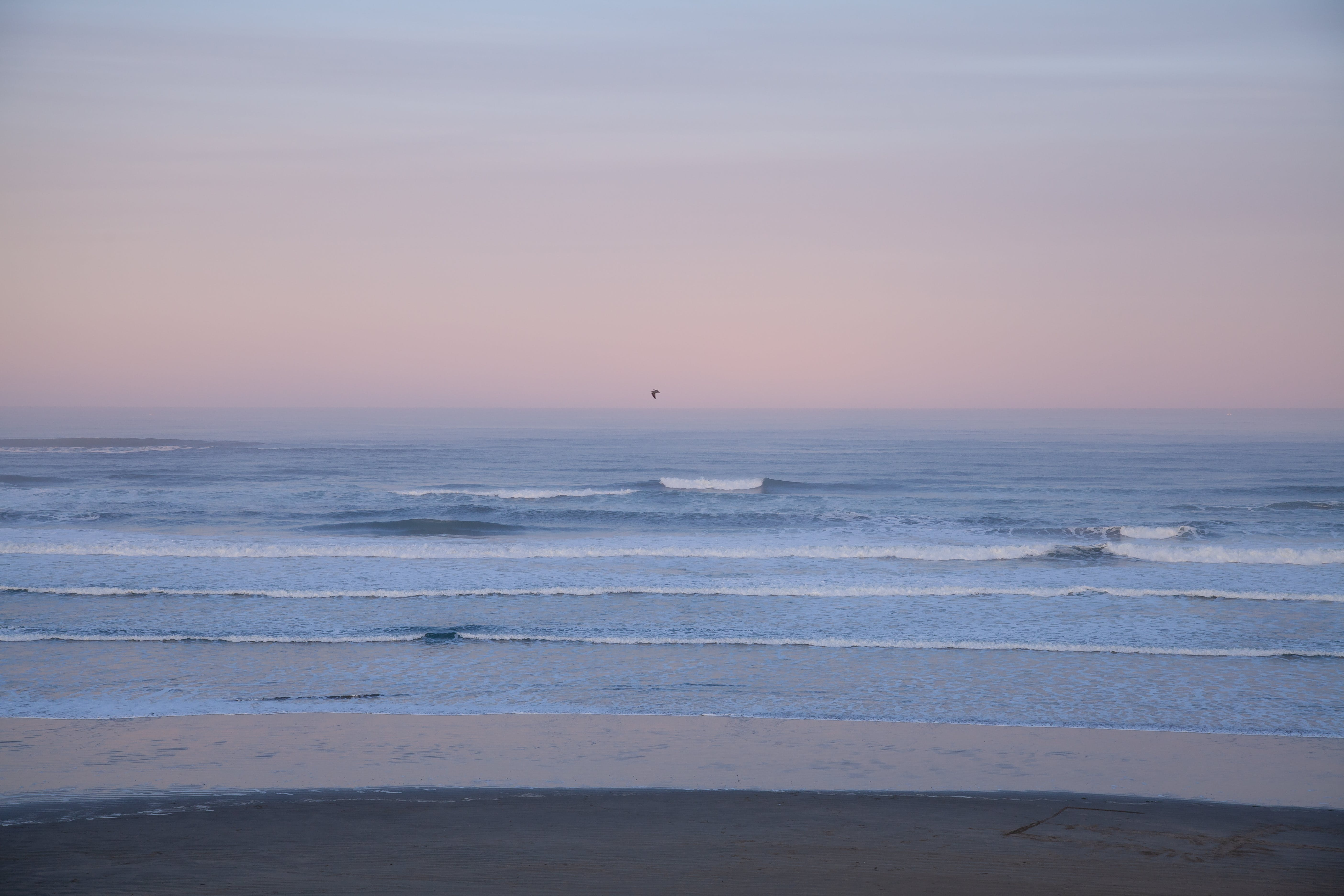 Kostenloses Stock Foto zu dämmerung, horizont, meer, meeresküste