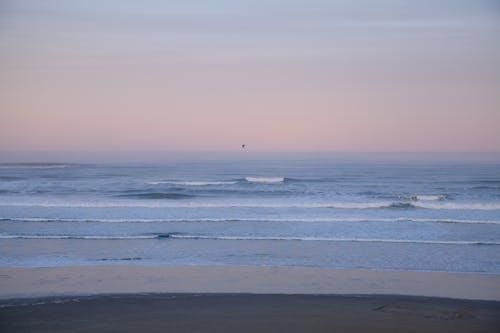 Foto d'estoc gratuïta de acomiadar-se, alba, capvespre, horitzó