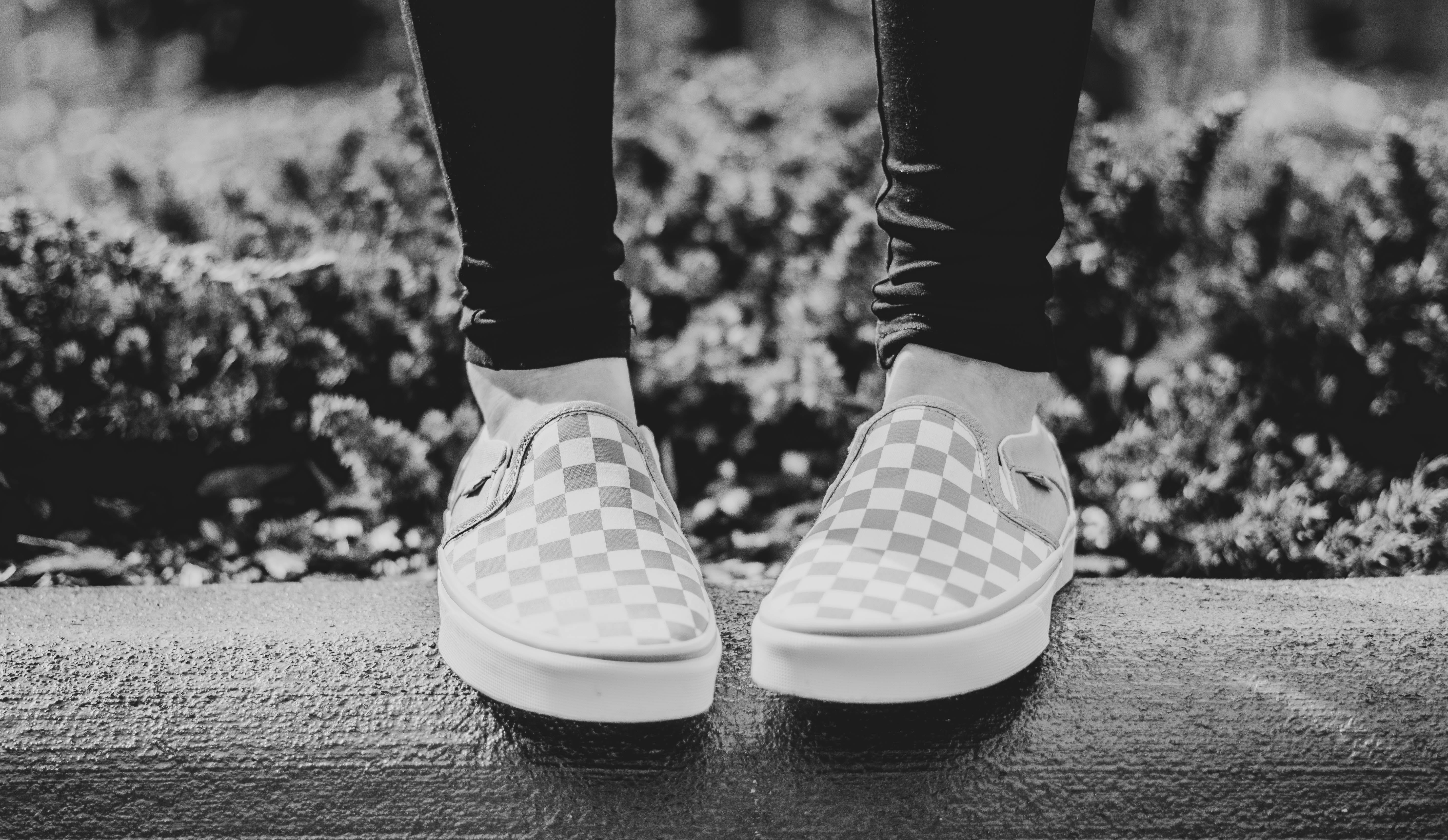 Free stock photo of fashion, vans, womens shoes