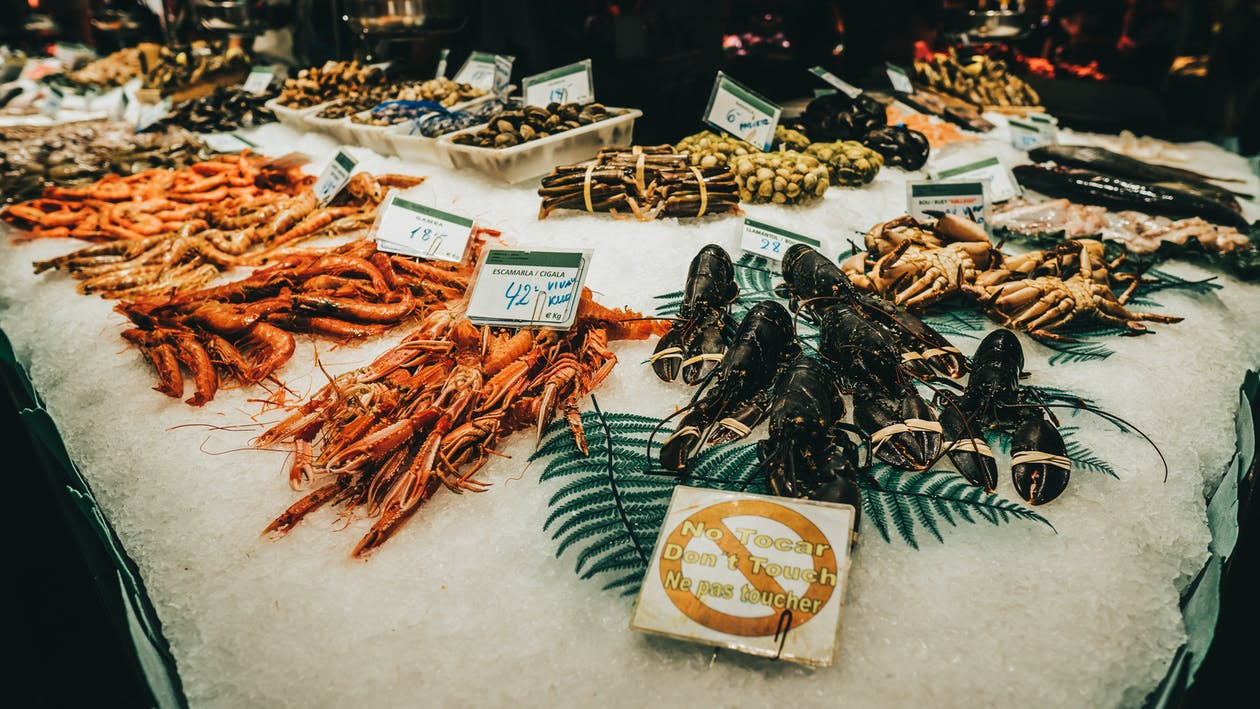 Assorted Seafood in a Market