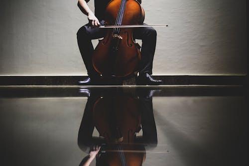 Fotos de stock gratuitas de actuación, artista, chelo, instrumento de cuerda