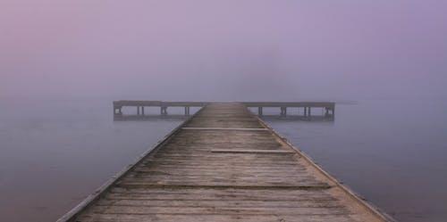 Free stock photo of dock, fog, foggy