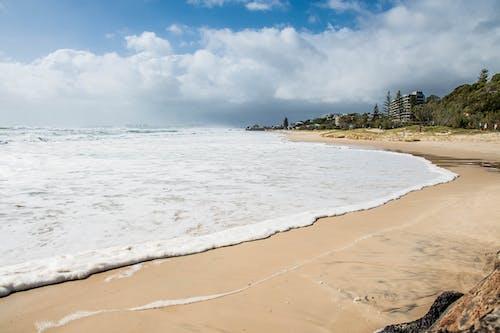 Photo of Sea Foam on Beach