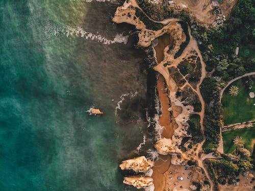 Foto profissional grátis de aéreo, aerofotografia, areia, árvores